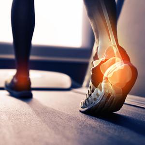 Ortho-Sports-Medicine