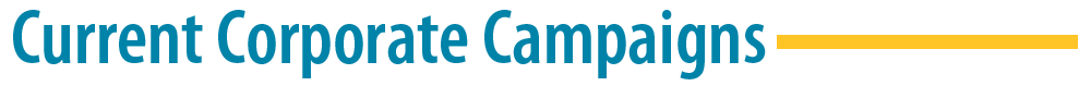 campaign-Header