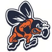 bridgeman-logo