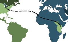 Michigan_to_Africa