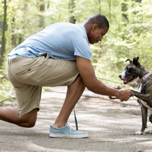 Reverse Lunges while shaking dogs paw
