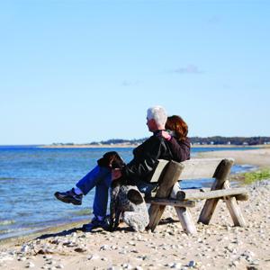 seniors sitting on bench at beach