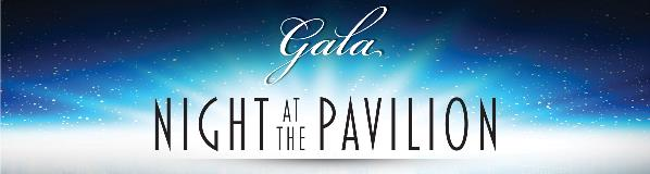 Web Banner-3850x1030- Foundation Gala-2019