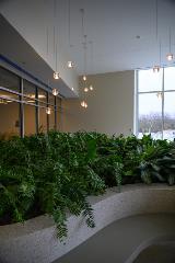 Healing garden, Critical Care Unit